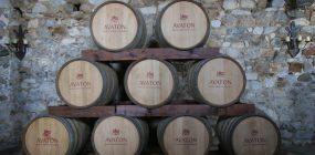 Neun Holzfässer vom Weingut Tsantali