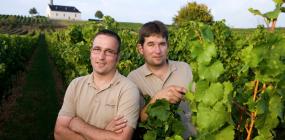 Ein Bild von Andreas und Stefan Hemer im Weinberg