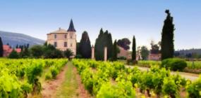 Das Chateau La Baronne und einige davor liegende Weinberge