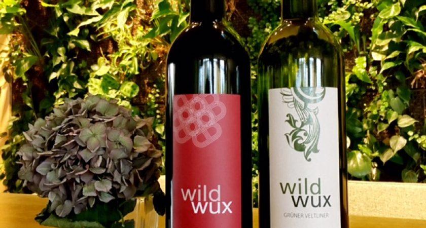 Zwei Flaschen Wein des Wildwux Projektes