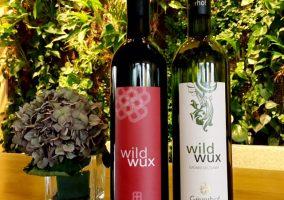 zwei Flaschen wildwux Wein