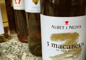 Eine Flasche Wein 3 Macabeus von Albet i Noya