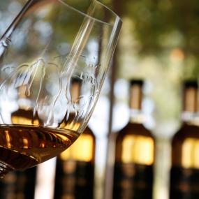 Lieblingswein – Petit Guiraud Sauternes