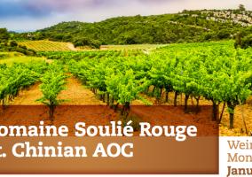 Weinberge der Domaine Soulié