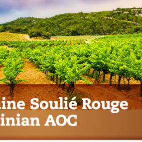 Domaine Soulié Rouge St. Chinian AOC -unser Wein des Monats –