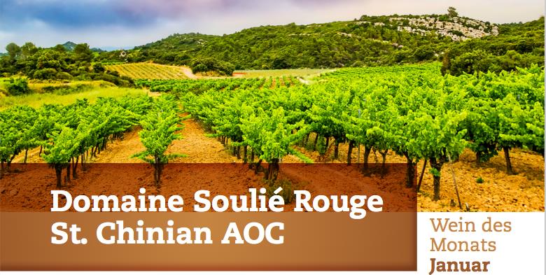 Weinberge der Domaine Soulié Rouge